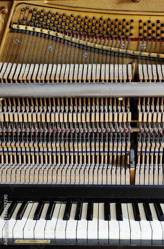 inside the piano: string, pins, keys