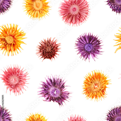 Seamless dried flowers pattern