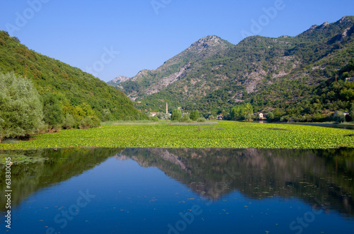 River Crnojevica In Lake Skadar National Park, Montenegro