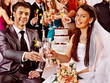 Wedding couple and guests drinking champagne.
