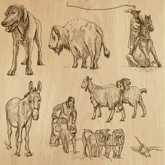 Animals around the World (set no. 9) - vector set, hand drawn