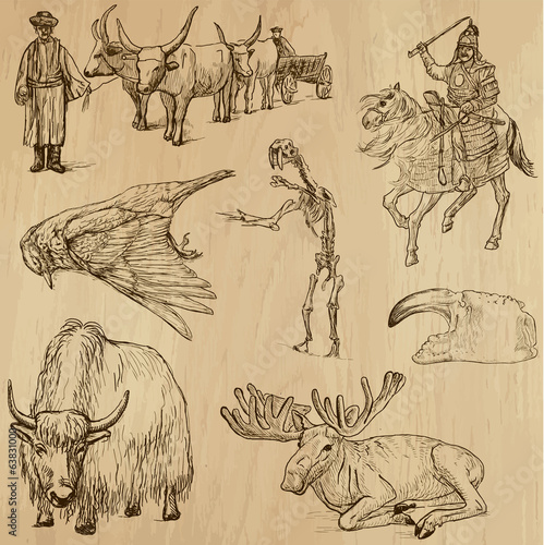 Animals around the World (set no. 15) - vector set, hand drawn