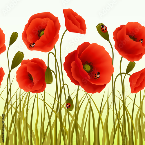 Poppy grass seamless wallpaper