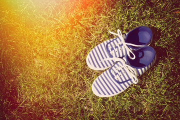 Striped blue canvas shoe in spring on sunlit grass