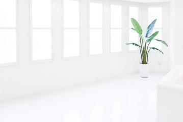 窓のある白い部屋