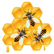 vector working bees on honeycells
