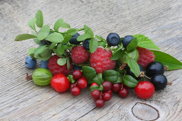 Cowberry, bilberry, gooseberry, blueberry, currant, cherry, rasp
