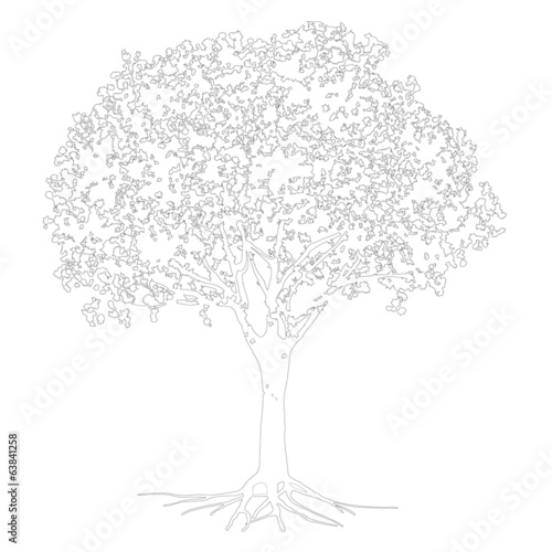 Vector sketch of silhouette tree