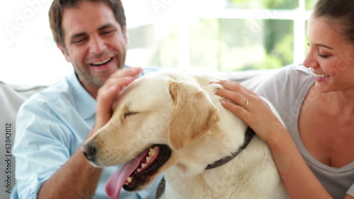 Happy couple petting their labrador dog on the couch
