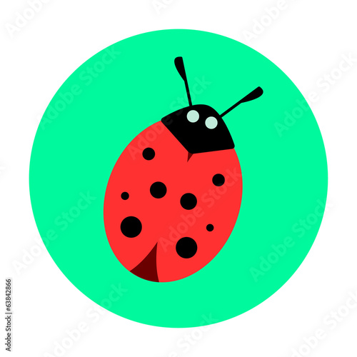 ladybug on a green background
