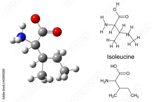 Structural model of isoleucine molecule