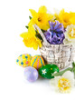 Easter eggs with spring flowers in basket. Isolated on white