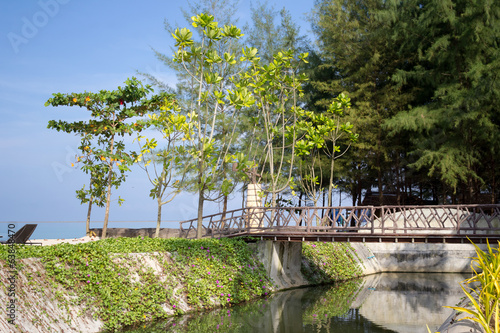 wooden bridge cross the river to the sea