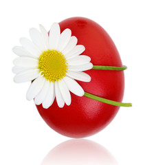 Red Easter egg with daisy flower