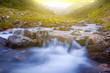 closeup rushing river