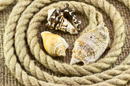 Jute rope with shells