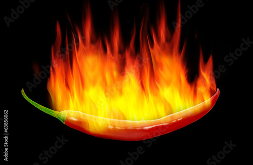 red hot chili pepperon back background