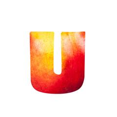 fruits and vegetables - letter U