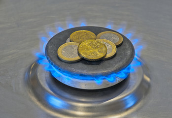 Euro Coins In a Blue Flame Gas