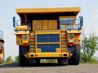 yellow tipper