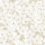 Fototapety Seamless background with white flowers. Vector illustration.