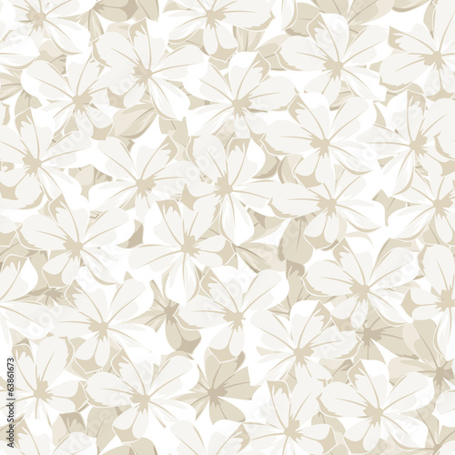 Seamless background with white flowers. Vector illustration.
