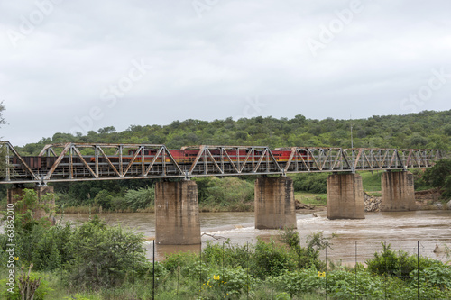 train crossing bridge over elephant river