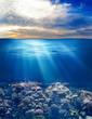 Leinwandbild Motiv sea or ocean underwater life with sunset sky