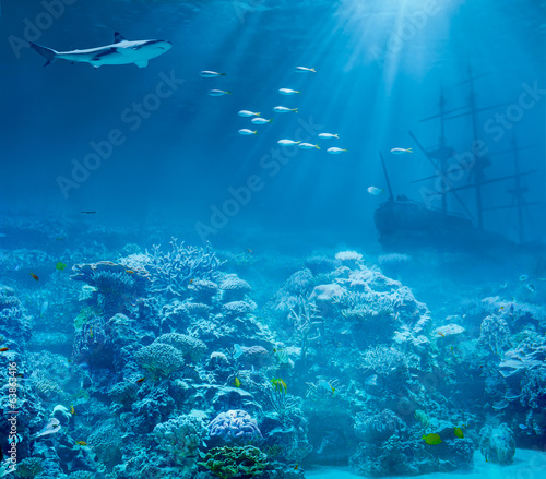 Sea or ocean underwater with shark and sunk treasures ship - 63863416