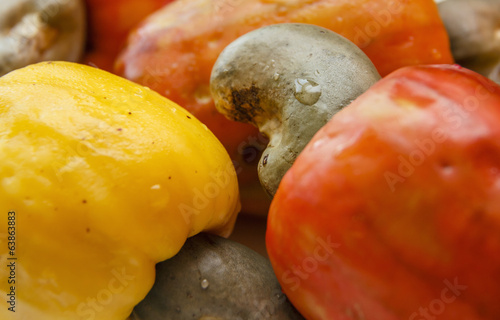 Cashew Nut Apple