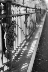 Iron fence with face in garden castle