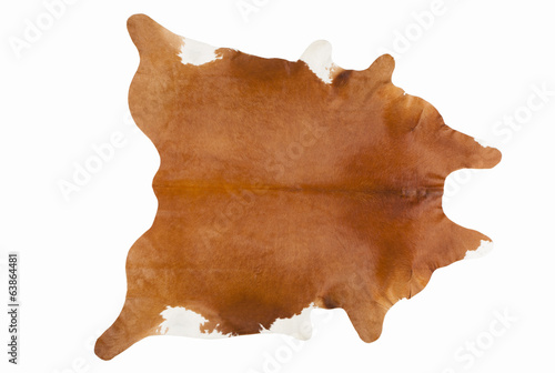 Furry Russet Pelage as a Rug