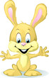 cute baby bunny cartoon