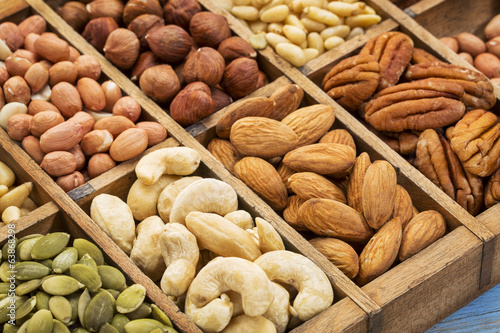 nuts and seed collection