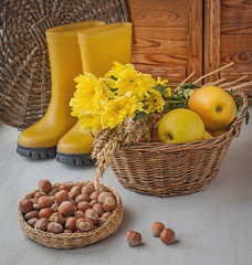 Harvest of apples, nuts and wheat