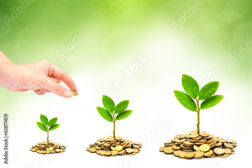 hand giving a coin to trees growing on piles of coins / csr