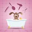 Постер, плакат: Dog grooming