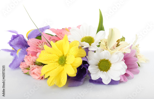 Beautiful flowers isolated on white