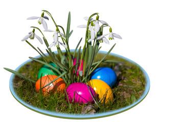 Eier auf buntem Teller