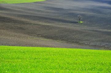paesaggi dalla Toscana