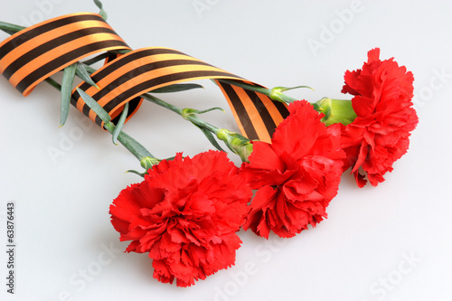 Three red carnations tied with Saint George ribbon on gray