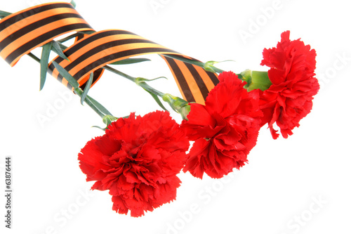 Three red carnations tied with Saint George ribbon on white