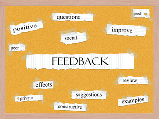 Feedback Corkboard Word Concept