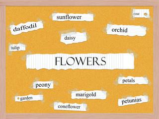 Flowers Corkboard Word Concept