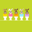 5 Rabbits Sunglasses Eggshells Eggcups Green