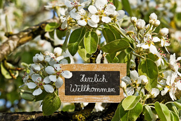 Schild zwischen Blüten, Herzlich Willkommen - sign, welcome
