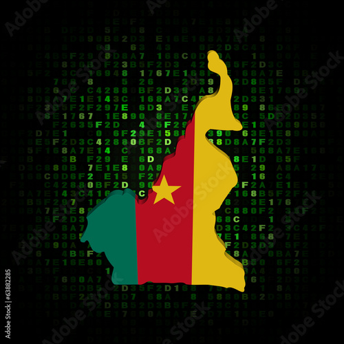 Cameroon map flag on hex code illustration