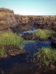 peat bog turf landscape