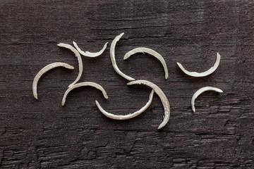 Nail clipper & nail clippings