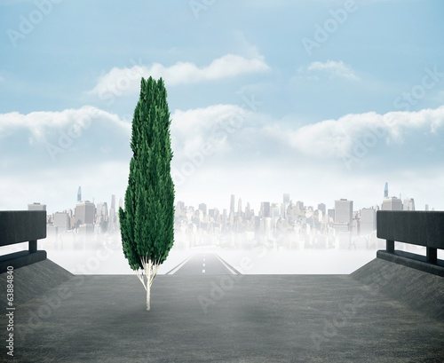 Composite image of tall tree with green foilage